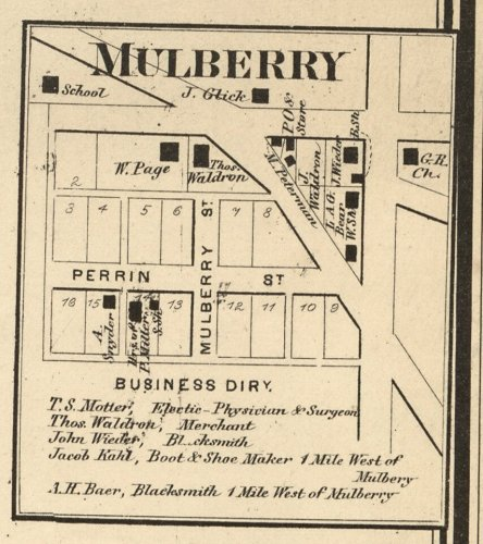 Mulberry 1865